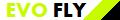 Airline Logo der Airline EvoFly